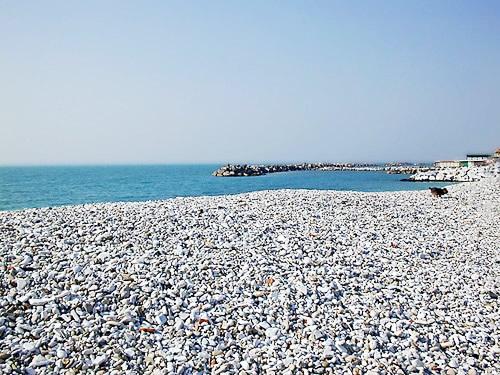 mare spiagge pisa foto